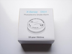 ds31-01-300x225