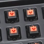 eg-orange