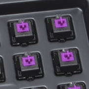eg-purple