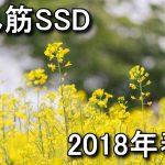 【2018年春】売れ筋SSDのスペックまとめ