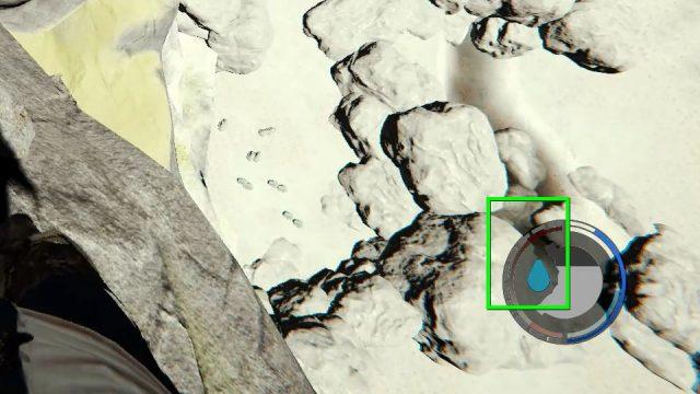 the-forest-meds-02-640x360