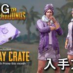 【PUBG】Spa Day Crateの入手方法と中身