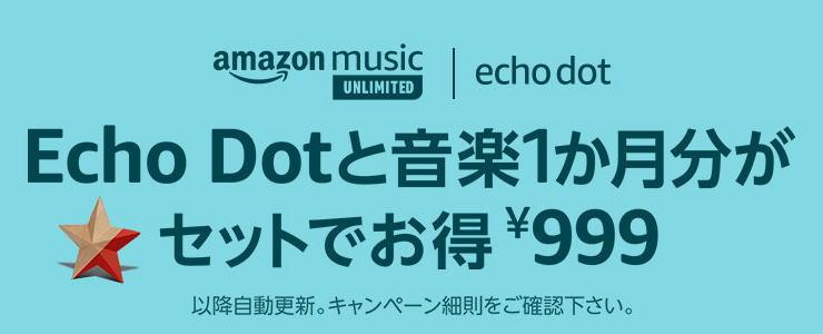 echo-dot-19yen-999yen-campaign-link