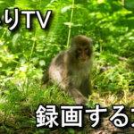 hikari-tv-rokuga-hdcp-150x150