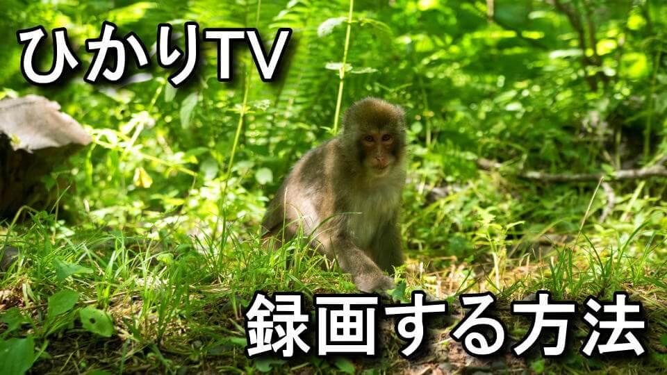 hikari-tv-rokuga-hdcp