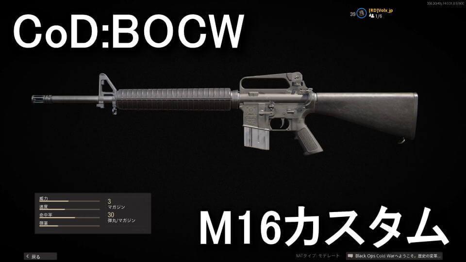 cod-bocw-m16-attachment