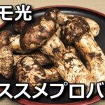 docomo-hikari-osusume-isp-150x150